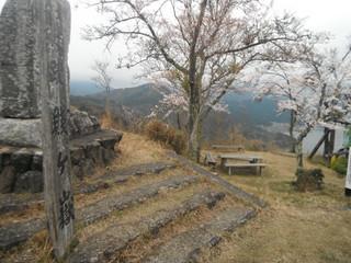 【登山レポート】山本山~賤ヶ岳縦走 余呉湖畔の桜トレッキング 2016年4月8日