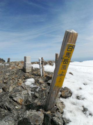 【登山レポート】白馬岳・主稜 2016年5月8日