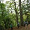 【登山レポート】近畿の最高峰 大峰・八経ヶ岳 2016年5月15日